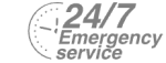 24/7 Emergency Service Pest Control in Kentish Town, NW5. Call Now! 020 8166 9746